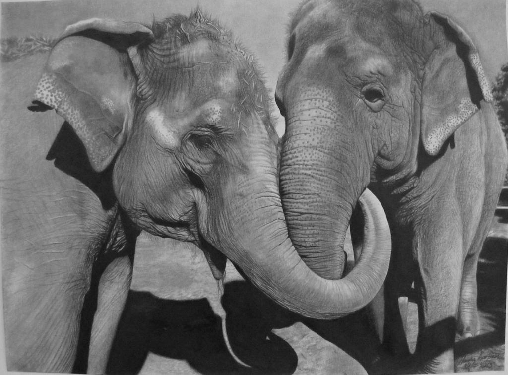 The Elephants by HannaKarlsson