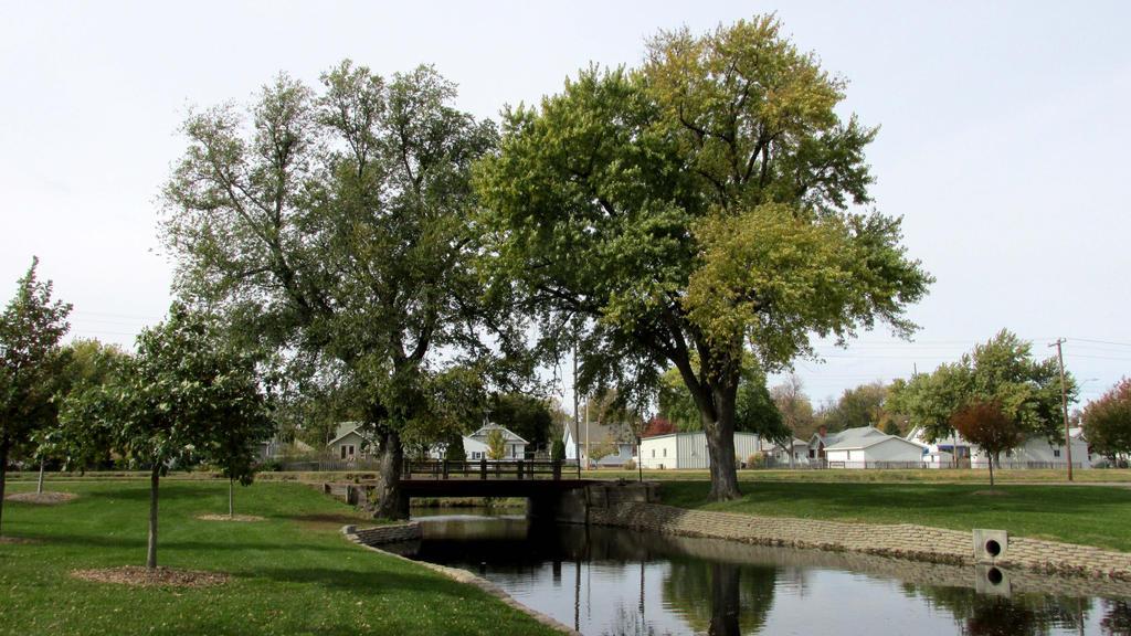 Trees Over the Bridge 0268 by Zorias