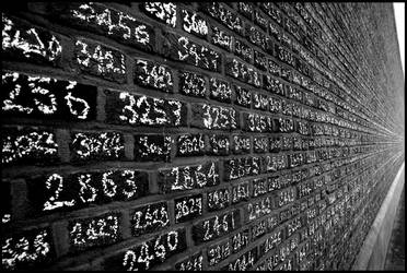 Lucky Numbers by Moviefreak