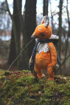 Slastena The Fox