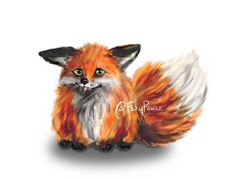 Chonk Fox