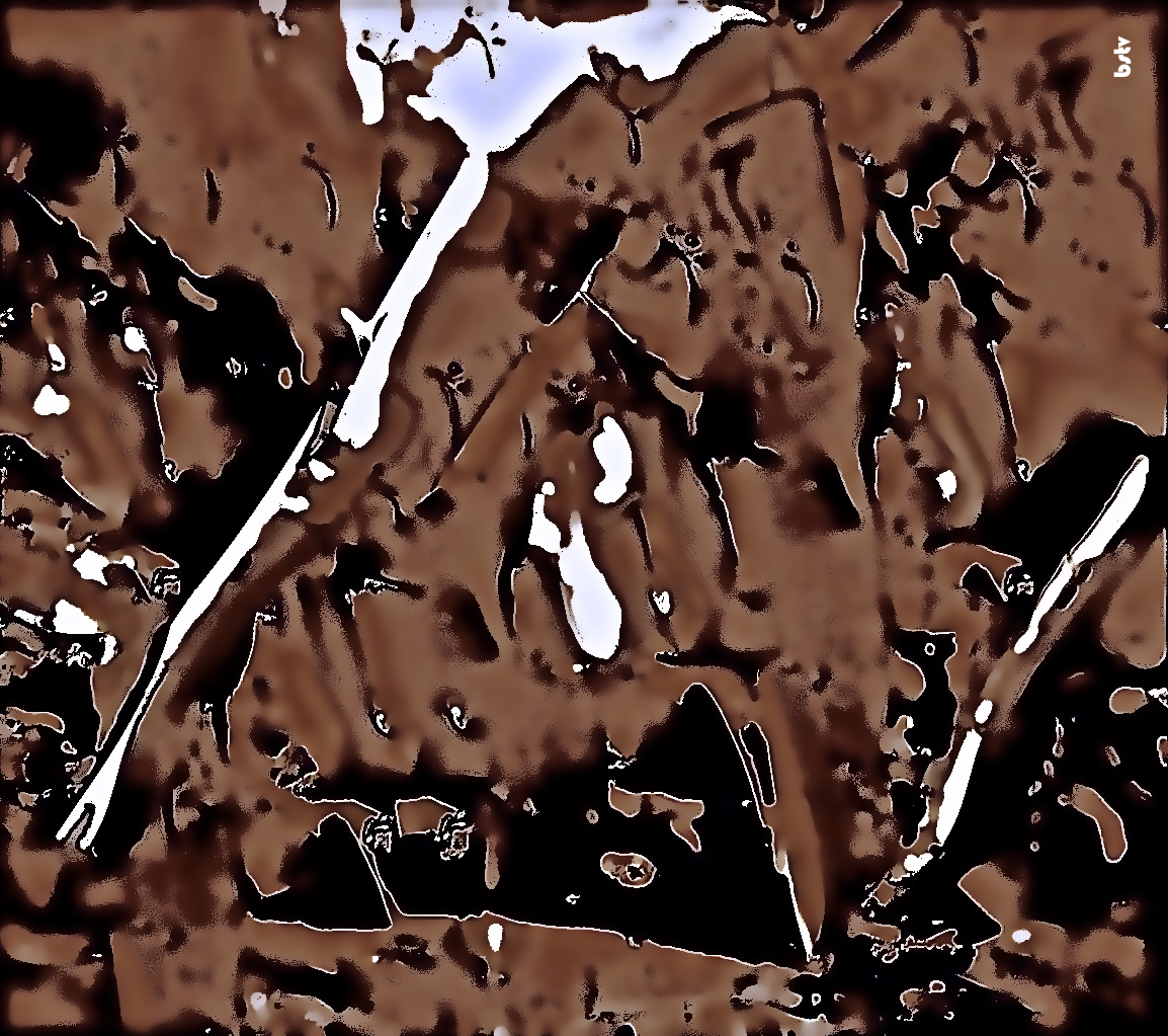 LIFE ON MARS: THE T4 LAKES