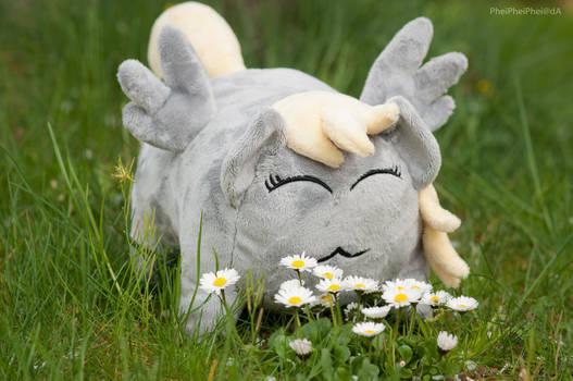 Derpy loaf enjoying some flowers