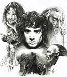 LOTR The Fellowship one