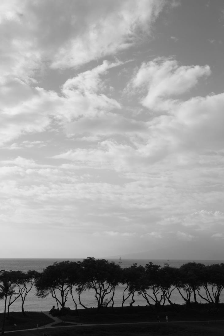 Hawaiian Sky in BW by gupgup