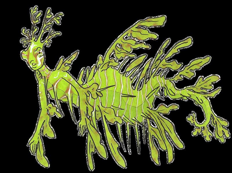 Leafy Sea Dragon Mermaid by MommaCabbit