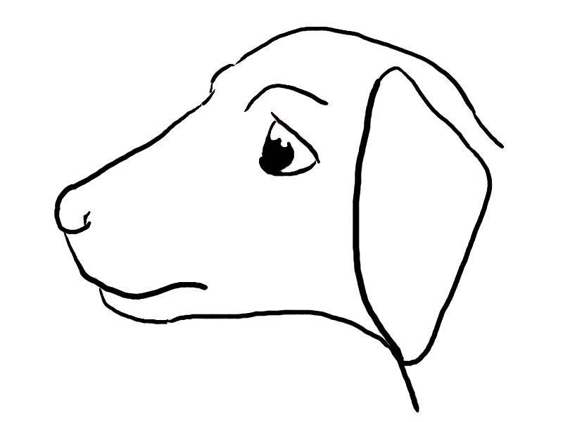 Line Drawing Of Dog : Pet dog line drawing by kuritsutei on deviantart