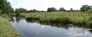 Basingstoke Canal 2