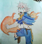 Fairy Tail - Rage of the Fire DragonSlayer