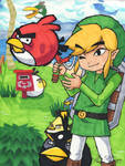 Link and The Angry Birds