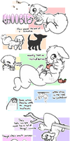 Closed Species: Choobee Introduction!