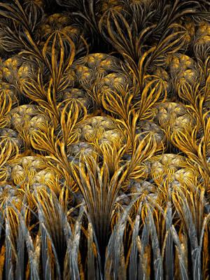 Field Of Saffron by Holmes-JA