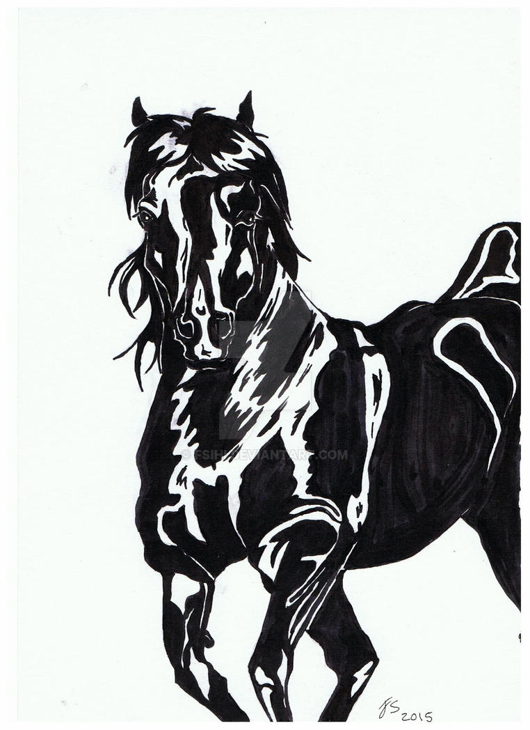 Dark Horse by Fsihi
