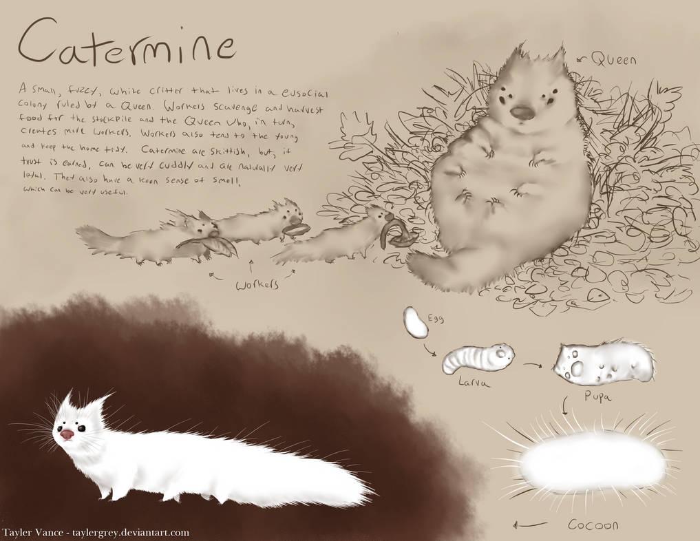 Catermine