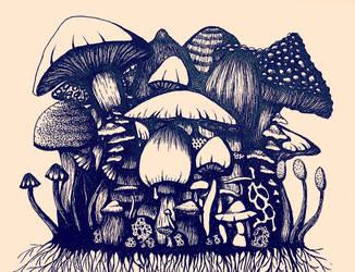 Above the Mycelium by taylergrey