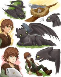 Hiccup and Toothless2