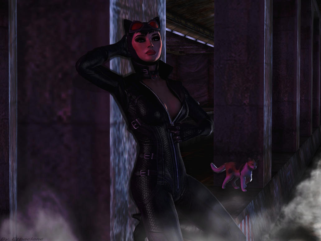 Catwoman wallpaper by ethaclane on DeviantArt