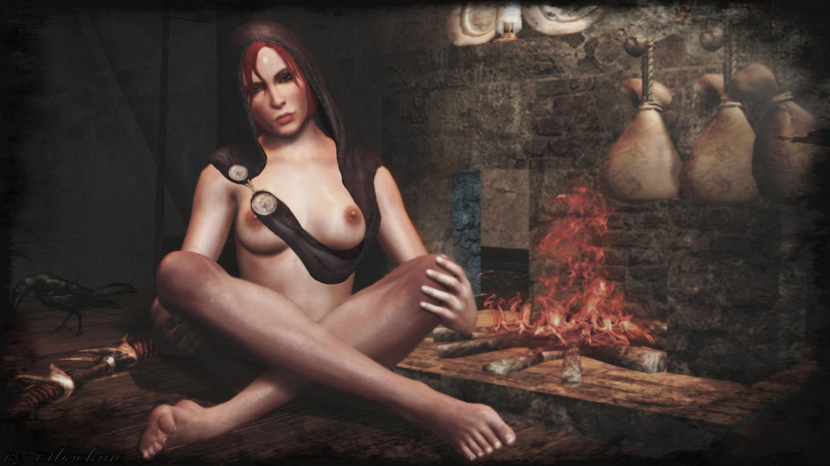 Dragon Age 4 : qu'en attendez vous ? - Page 2 Dragon_age_inquisition___sexy_leliana_by_ethaclane-d8h6pwf