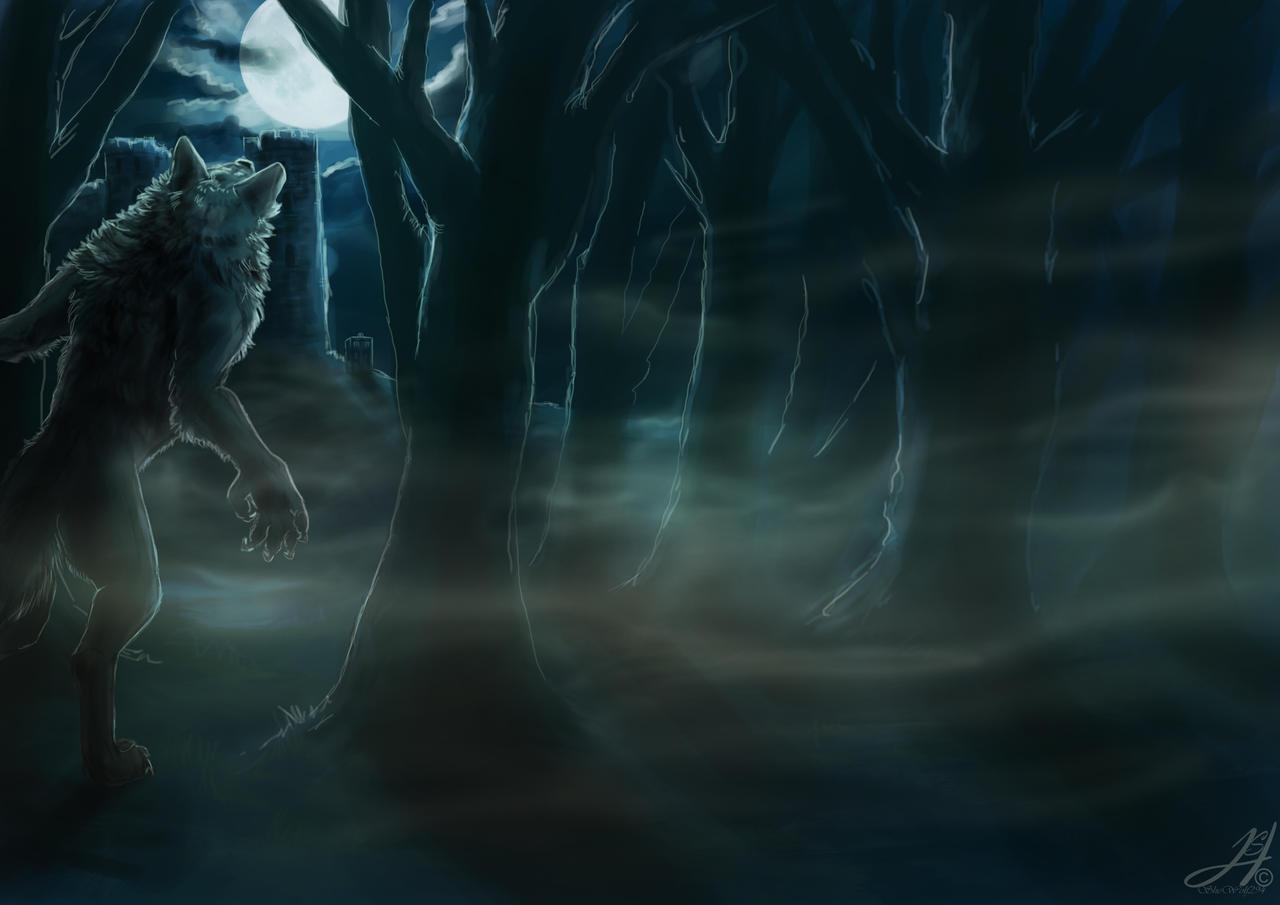 ...:Foggy Fullmoon:... by Arkarti