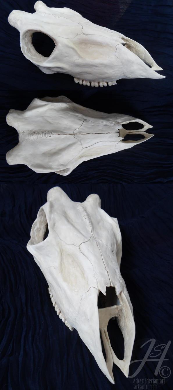 skull by Arkarti