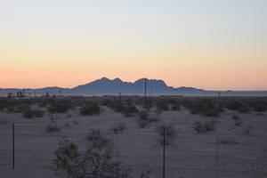 Arizona 42