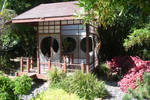 San Diego Botanic Garden 19