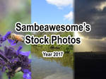 2017 Stock by AwesomeStock
