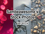 2013-14 Stock Photo Pack [FREE] by AwesomeStock