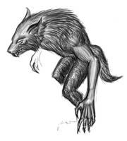 Skyrim by Danillius