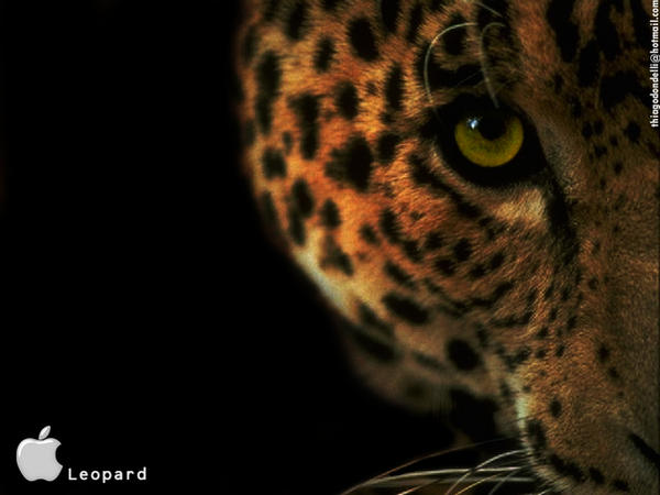 wallpapers for mac. Mac OS X Leopard Wallpaper