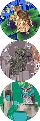 Owls in Wonderland 5