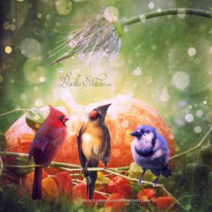 Three Little Birds by PriscillaSantanaArts