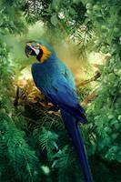 Tropical by PriscillaSantanaArts