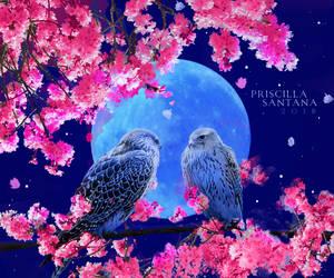 Blue Moon by PriscillaSantanaArts