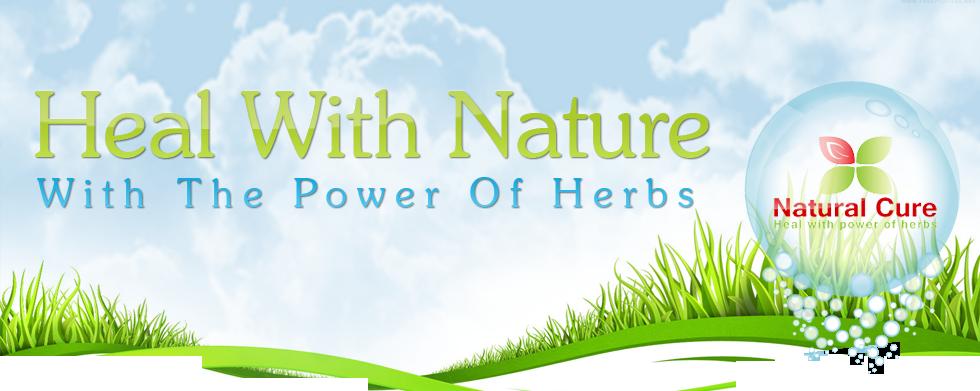 Herbal Banner By Aliraza91 On Deviantart