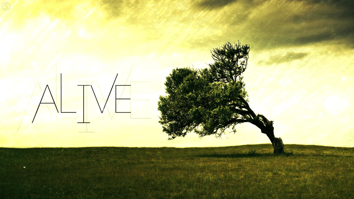 Alive Nature Wallpaper By SyntheticArts