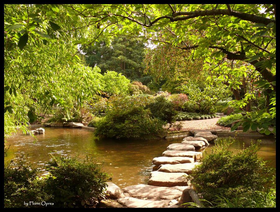 Asian Garden Photos 83