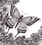 Flutter By Butterfly 25Aug12