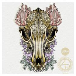 Inktober 2019 Day 3 - Fox skull and Ramaria