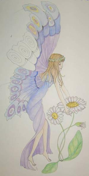 Fairy for Helen 1