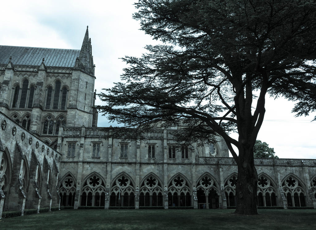 Salisbury Cathedral 2 by FubukiNoKo