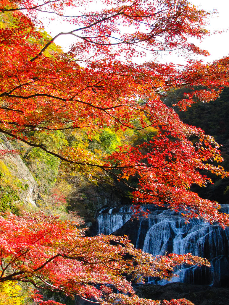 Fukuroda falls 4298 by FubukiNoKo
