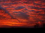 Burnished Copper Sunset
