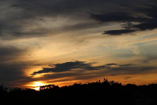 Good night sun.