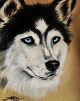 Sharpie Portrait by LusciousLavender