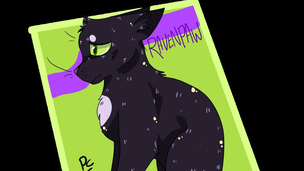 Ravenpaw icon by leafdawgs