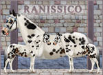 Ranissico Reference