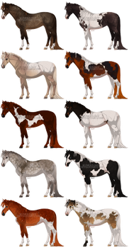 cute ponies [2/10 OPEN]