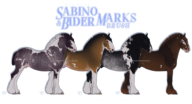 sabino and bider marks brush