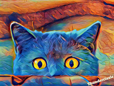 Owl or Kitty Popart by Thundercizzle  by Thundercizzle